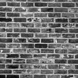 Splotched Bricks Forming Wall of Old Building in Savannah Photographic Print by Robert W. Kelley