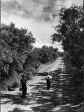 Two Children Walking Down a Dirt Road Going Fishing on a Summer Day Reproduction photographique par John Dominis