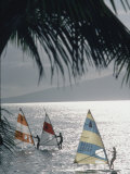 Wind Surfers at Waihikula, Maui Premium Photographic Print by Ted Thai