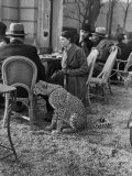 Woman Sitting with Her Pet Ocelot Having Tea at Bois de Boulogne Cafe Premium fotoprint van Alfred Eisenstaedt