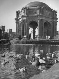Palace of Fine Arts Premium Photographic Print by Charles E. Steinheimer