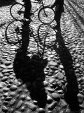 Shadows Cast on Cobblestone Street in Early Morning on Nantucket Photographic Print by Alfred Eisenstaedt