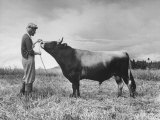 Patricia Colleen Altree Petting Her Pet Bull on Her Father's Farm Premium Photographic Print by J. R. Eyerman