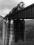 Southern Railway Train on Trestle Bridge. 210 Foot Tressel over the North Broad River, Georgia Premium Photographic Print by Alfred Eisenstaedt