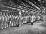 Rows of Meat in Storage at Bronx Warehouse Fotografie-Druck von Herbert Gehr