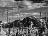 Mountains of Yukon Territory Seen from Alcan Highway Photographic Print by J. R. Eyerman