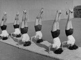 Teenage Girls from Hoover High School Standing on Their Heads in Gymnastics Class Premium Photographic Print by Martha Holmes