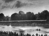 Rowers Competing in Rowing Event on Thames River Premium Photographic Print by Ed Clark