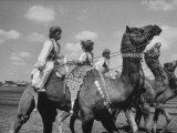 Pakistani's Riding Camels Premium Photographic Print by Art Rickerby
