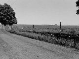 Quiet Country Road Premium Photographic Print by Vernon Merritt III