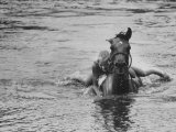 Sydney Hoyle Floundering on Back of Horse in Water at Full Cry Farm Lámina fotográfica por Art Rickerby