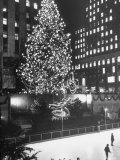Rockefeller Center Christmas Tree at Night Premium Photographic Print by Alfred Eisenstaedt