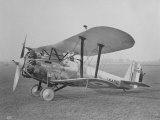 "RAF ""Bristol"" Bulldog Fighter Plane Photographic Print"