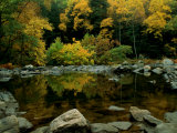 An Autumn View of Calf Pasture River Photographic Print by Medford Taylor