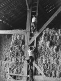 Two Boys Playing in a Barn Premium Photographic Print by Ed Clark