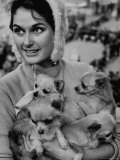 Woman Holding Four Long Haired Chihuahuas, During Cruft's Dog Show Premium Photographic Print by Terence Spencer