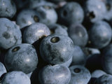A Close View of Fresh-Picked Blueberries Photographic Print by Heather Perry
