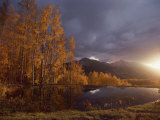 Autumn Landscape Near Telluride, Colorado Photographic Print by Annie Griffiths Belt