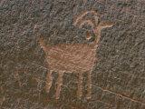 Anasazi Petroglyph Lámina fotográfica por Edwards, Walter Meayers