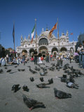 Tourists Feed the Pigeons in Saint Marks Square in Venice, Italy Photographic Print by Taylor S. Kennedy