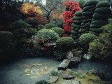 View of a Private Garden in Hagi