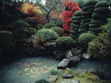 View of a Private Garden in Hagi Photographic Print by Sam Abell