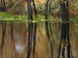 Missisquoi National Wildlife Refuge in Vermont Photographic Print by Medford Taylor