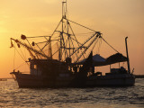 A Shrimp Boat Silhouetted against an Orange Sky Lámina fotográfica