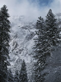 Scenic of Snow-Covered Mountains and Fir Trees Photographic Print by Anne Keiser