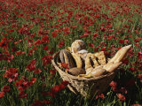 Basket of Bread in a Poppy Field in Provence Photographic Print by Nicole Duplaix