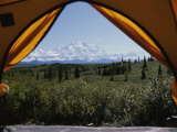 Tent Flaps Open to a Breathtaking View of Mt. Mckinley Photographic Print by Stacy Gold