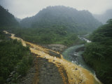 Soil Erosion in a Rain Forest, Costa Rica Photographic Print by Michael Melford