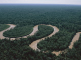 An Aerial of the Rio Los Amigos Snaking Through a Rain Forest Reserve Photographic Print by Maria Stenzel