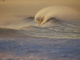 Sunlight Reflects off Surf at Sunrise Photographic Print by Rich Reid