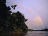 Rainbow over Amazon Rain Forest Photographic Print by Steve Winter
