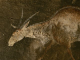 A Close View of an Eland in a San Rock Painting Photographic Print by Kenneth Garrett
