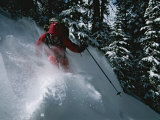 A Skier Skiing Backcountry Powder Photographic Print by Tim Laman