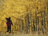 Woman Running in Field by Aspen Trees Photographic Print by Dugald Bremner