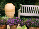 Potted Plants and a Garden Bench in the Chicago Botanic Garden Photographic Print by Paul Damien