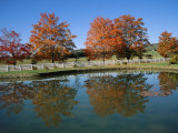 Trees in Fall Foliage Reflected in a Virginia Pond Photographic Print by Medford Taylor