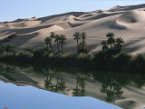 The Photographer Discovers an Oasis in the Middle of the Sahara Desert Photographic Print by Peter Carsten