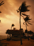 Un orage ravage les palmiers et les cabanes de Glovers Reef Photographie par Bill Hatcher
