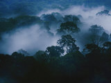 An Early Morning Mist Enshrouds the Danum Valley Rain Forest in Northeastern Borneo Photographic Print by Mattias Klum