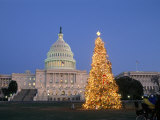 View of the National Christmas Tree Standing Before the Capitol Photographic Print by Richard Nowitz