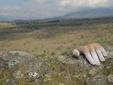 A Hand Tops a Summit in Hells Gate Lámina fotográfica por Model, Bobby