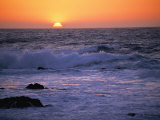 California Sunset Photographic Print by Paul Nicklen