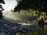 Rays of Sunlight Shining on a Stone-Filled Creek in a Woodland Setting Photographic Print by Tim Laman