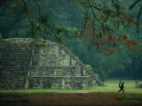 A Monkey Who Lives at the Site Walks Past a Mayan Ruin at Copan Photographic Print by Kenneth Garrett