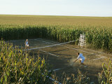 A Game of Tennis on a Court Carved from a Cornfield Impresso fotogrfica por Joel Sartore