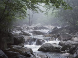 A Stream Courses Through Baxter State Park Photographic Print by Phil Schermeister